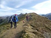Guided Walks & Training